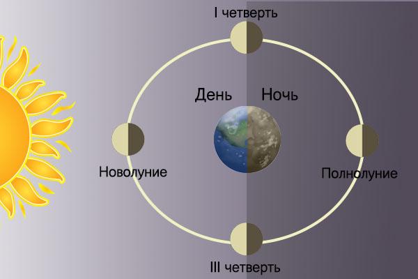 Вид планет в Космосе при основных фазах Луны